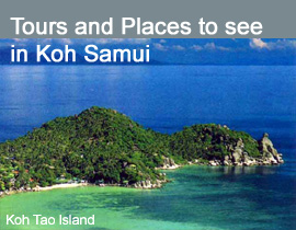 See all tours in Koh Samui : Day trip to Koh Tao, Jungle tour, Diving spots